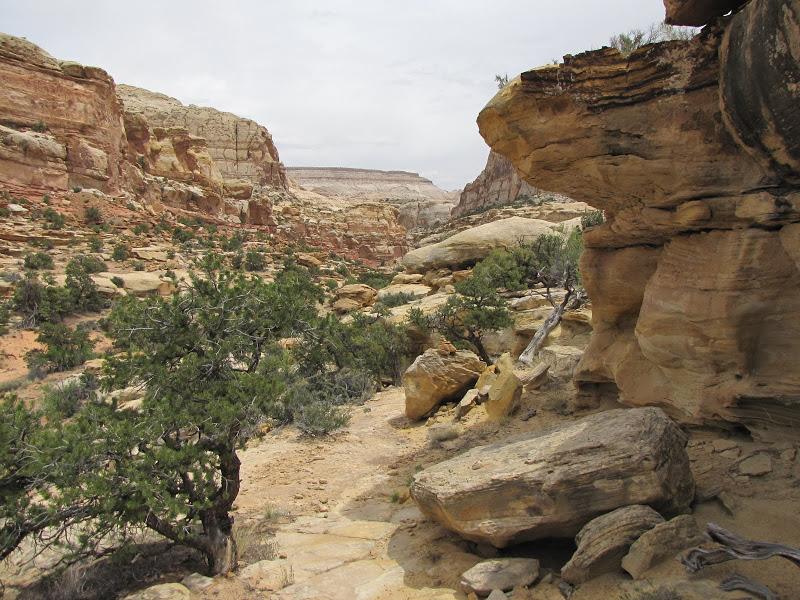 San Rafael Trail